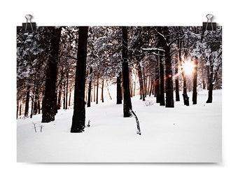"Large Wall Art, Film Photography, Winter Decor, Fine Art Photography, Wall Art, Neutral Home Decor, Affordable Wall Art, ""Winter Sunburst"""