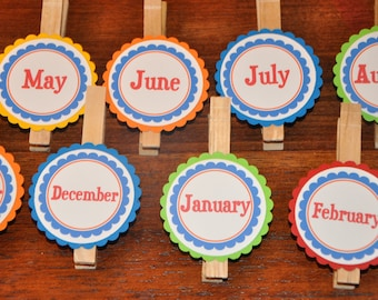Month Photo Clips. Photo Banner. Picture Banner. Great for Birthdays. Primary Colors. FIrst Birthday. Set of 13