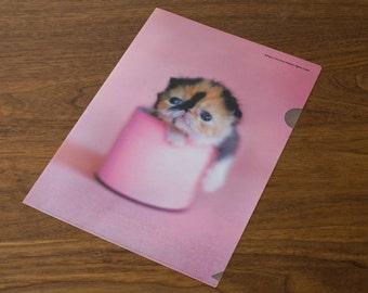 Clear folder - Meme Pink