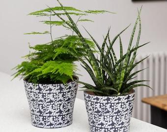 Inky blue printed indoor planter
