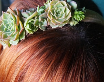 Succulent Hair Band