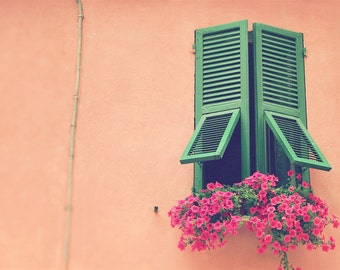 Window Shutters, Tattered Shutters, Green Shutters, Pink Flowers, Window Shutter Print, Window Shutter Art, Peach Decor, Green Decor, Window