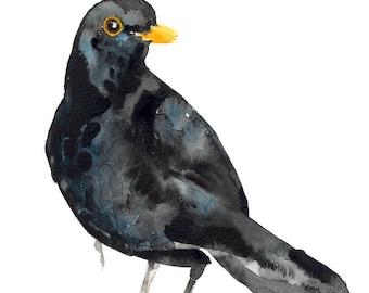 Blackbird/Blackbird Giclée Print