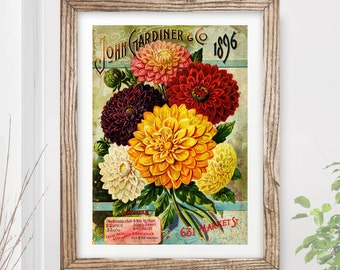 VINTAGE FLOWERS Art Print / Poster Dahlias Floral Nature Plants Kitchen Garden Home Horticulture A4 A3 A2 (10 Size Options)