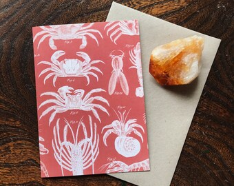 Vintage Natural History Lobster Art Print, Nautical Shellfish Illustration. Natural Science Home Decor, Gift for Fisherman, Greeting Card.