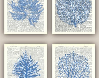 Sea fan art, 4 sea fan prints, sea fan coral, nautical Prints, bathroom wall decor, nursery art, play-room decor, beach cottage, 11X14