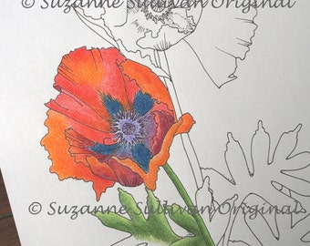 Poppy Flower Coloring Page, Kid Coloring Page, Adult Coloring Page, Oriental Poppy Coloring Page, Coloring Book Page, Printable Download