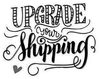 Add on Upgrade the shipping on Travel mugs/Mugs