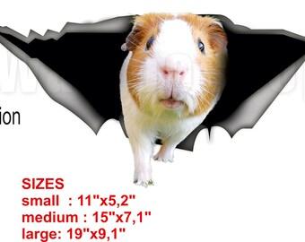 Guinea pig sticker,  guinea pig car decal, Vinyl decal, car decoration, pet decal, animal decal