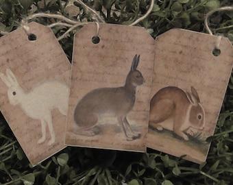 Rabbits Hang Tags