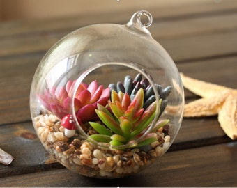 Glass Ball/ Glass Terrarium/ Artificial Plant/Home Decor/Gift