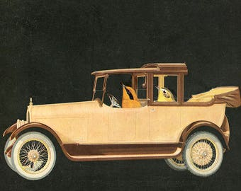 Driving Miss Daisy. Limited edition collage print by Vivienne Strauss.