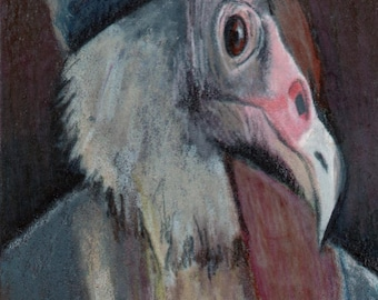 original art  aceo drawing anthropomorphic vulture ancestor animals in clothing