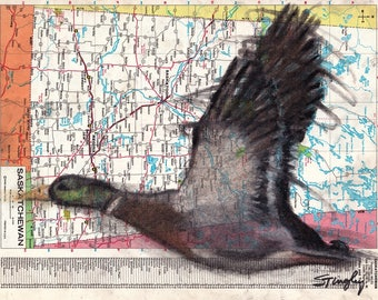 Custom Bird Drawing Duck #2 on Map
