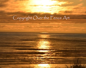 Copalis Beach Nature Photography Sunset Pacific Northwest Yellow Skies Greeting Card Blank Inside