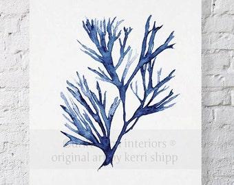 Seaweed Wall Art Print in Denim Blue - Blue Coral Art - Blue Seaweed Print - Sea Life Art Print - Coral Art Print - Seaweed V in Denim 8x10