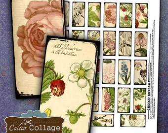 Simply Botanical Digital Collage Sheet 1x2 Domino Images for Domino Pendants, Paper Crafts, Bezel Settings, Decoupage, Scrapbooking