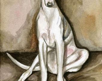 Indie - Whippet Puppy  Art Dog Print