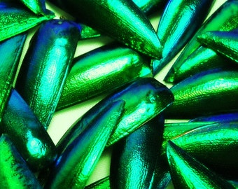 """Multipack 1.25"""" Elytra Beetle Wings GREEN TONE natural iridescent elyctra insect bug metallic jewel green and blue taxidermy"""