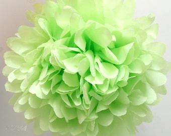 pistachio ... 1 Pom // Easter // Spring // Wedding // Party //