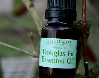 Douglas Fir Essential Oil Wilddcrafted in the Pacific Northwest....Pseudotsuga menziesii