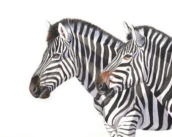 Zebras watercolor painting animal art PRINT of watercolor painting A4 size, Z2014, zebra print, african animal print