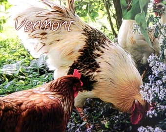 VERMONT Rooster and Hens Postcard - 10 pack