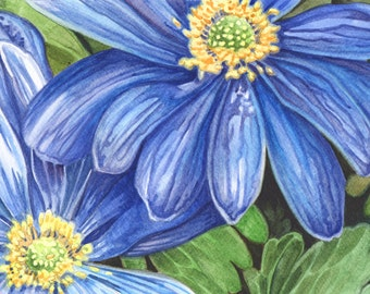 Anemone Blanda blue watercolor painting, Blue Daisies, ORIGINAL watercolor painting, FREE shipping