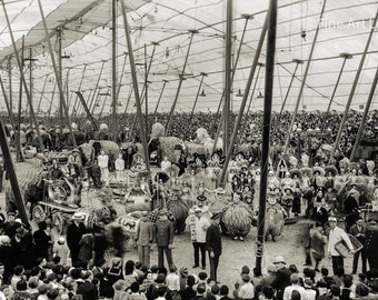 Photo of Ringling Bros. and Barnum & Bailey Circus, Brooklyn, New York, 1931, 11x17""