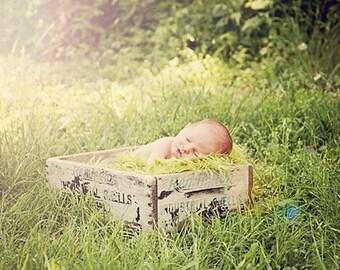 SALE Olive Green Mongolian Faux Fur Fabric Nest,  Fake Furs Baby Boy Girl Props, Basket Bowl Photo Prop, Soft Blanket