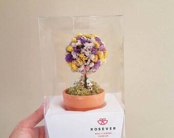 Rainbow Topiary/Dried Flower Tree