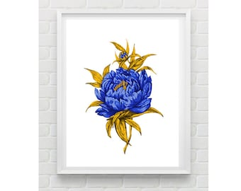 Botanical Flower Illustration Wall Art