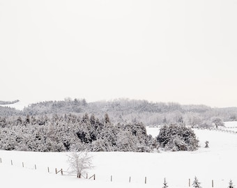 Winter landscape photograph. Nature photo for ski lodge dining room. Paper anniversary gift for husband. Oversized minimalist art print.