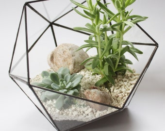 Medium Icosahedron / Stained Glass Terrarium / Handmade Glass Planter / Stained glass vase