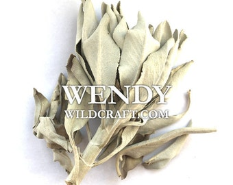 White Sage Smudge Incense Wildcrafted