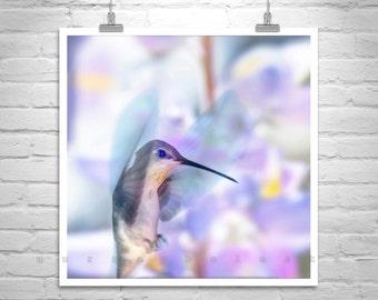 Hummingbird Art, Pretty Bird Picture, Hummingbird Picture, Bird in Flight, Bird Photograph, Gift for Bird Lover, Flying Hummingbird