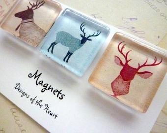 Deer Magnet Set - Square Glass Magnet set - Reindeer, Stag Head
