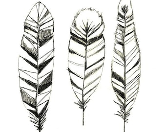 Feathers Print of Original Drawing  - Feather Art