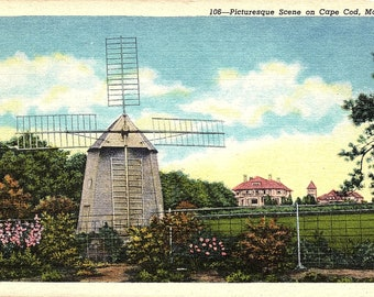 Cape Cod, Massachusetts, Windmill - Postcard - Vintage Postcard - Unused (II)