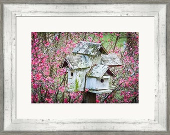 Professional Print of Bird House and Flowering Bush Photography by Sherry Walker