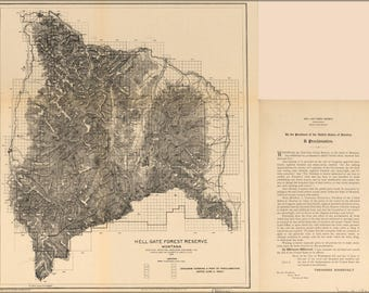 Poster, Many Sizes Available; Map Of Hell Gate Forest Reserve 1906