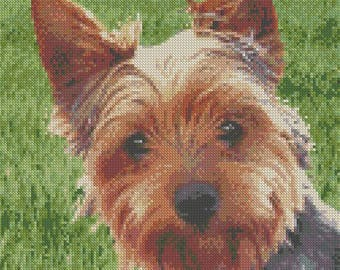 "Yorkie 2 Yorkshire Terrier Dog Counted Cross Stitch Kit 11.5"" x 9"" 29cm x 23cm"