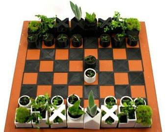 Chess Set Planter Succulents Gift