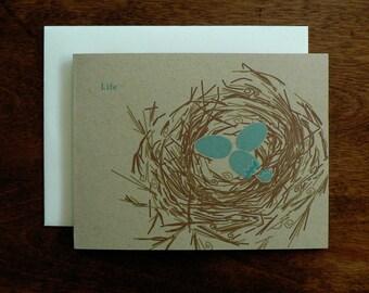 BABY : Life Birds Nest Card