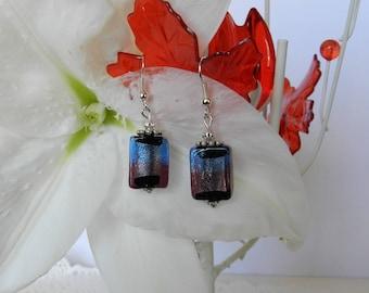 Rectangular Lampwork Glass earrings.