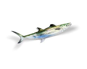 Spanish Mackerel, Mackerel Fishing, Mackerel Decal, Mackerel Sticker