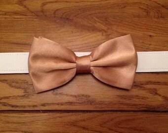 Bow tie dog wedding collar any colour