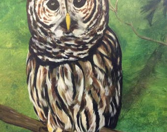 "Barred Owl, Acrylic Painting on 16"" x 20"" Canvas"