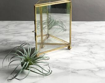 Glass Box / Glass Terrarium / Glass Box Terrarium / Glass Display Box / Triangular Glass Box