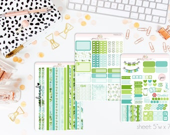Sweet Succulents HORIZONTAL Weekly Kit // 130+ Matte Planner Stickers // Perfect for your Erin Condren Life Planner // WKH0220